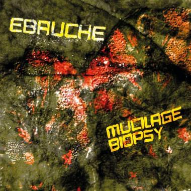 Ebauche - Mucilage Biopsy